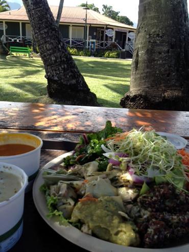 カウアイ島の胃腸の避難場所