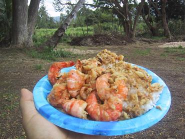 """5800カロリーの魅力か魔力。 ハワイで一番有名な屋台""""ジョバンニ"""""""
