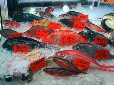 沖縄のまちぐぁー(市場)公設市場を検証! 沖縄人は何を食ってるの!?